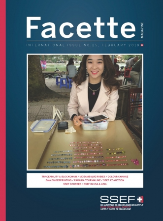 Facette Issue 25 (February 2019)